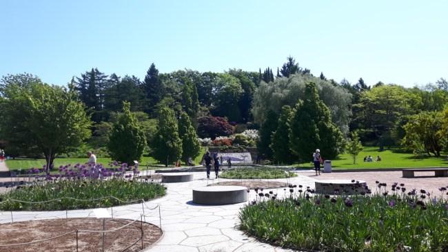 Botaniska tradgarden Göteborg (2)