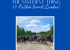 Podcast The Swedest Thing Noord-Zweden