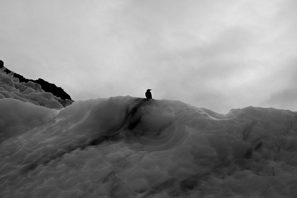 Iceland-0705
