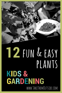 Try some of these easy and fun garden flowers and veggies in the kid's garden this summer. Our kids have had great success with many of these plants.