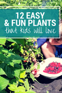Help kids get excited about gardening by choosing easy and rewarding flowers and vegetables for the kid's garden.