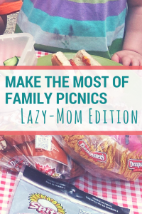 Family picnic planning: simple and easy