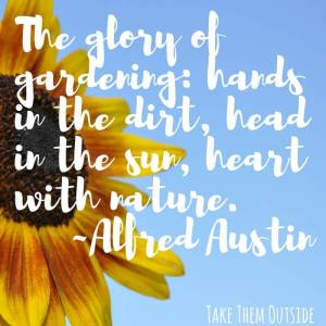 close up of a sunflower sitting against a blue sky. text overlay is a quote by Alfred Austin starting with the Glory of Gardining...