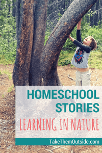 Boy reaching up the trunk of a curved tree in a wooded area, text reads homeschool stories learning in nature