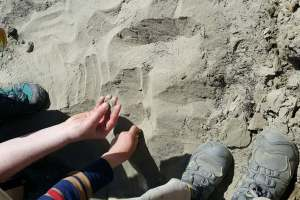 kids holding and drawing in sand