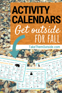 image of fall monthly activity calendars on a background of autumn leaves