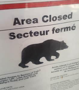 photo of a bear closure warning