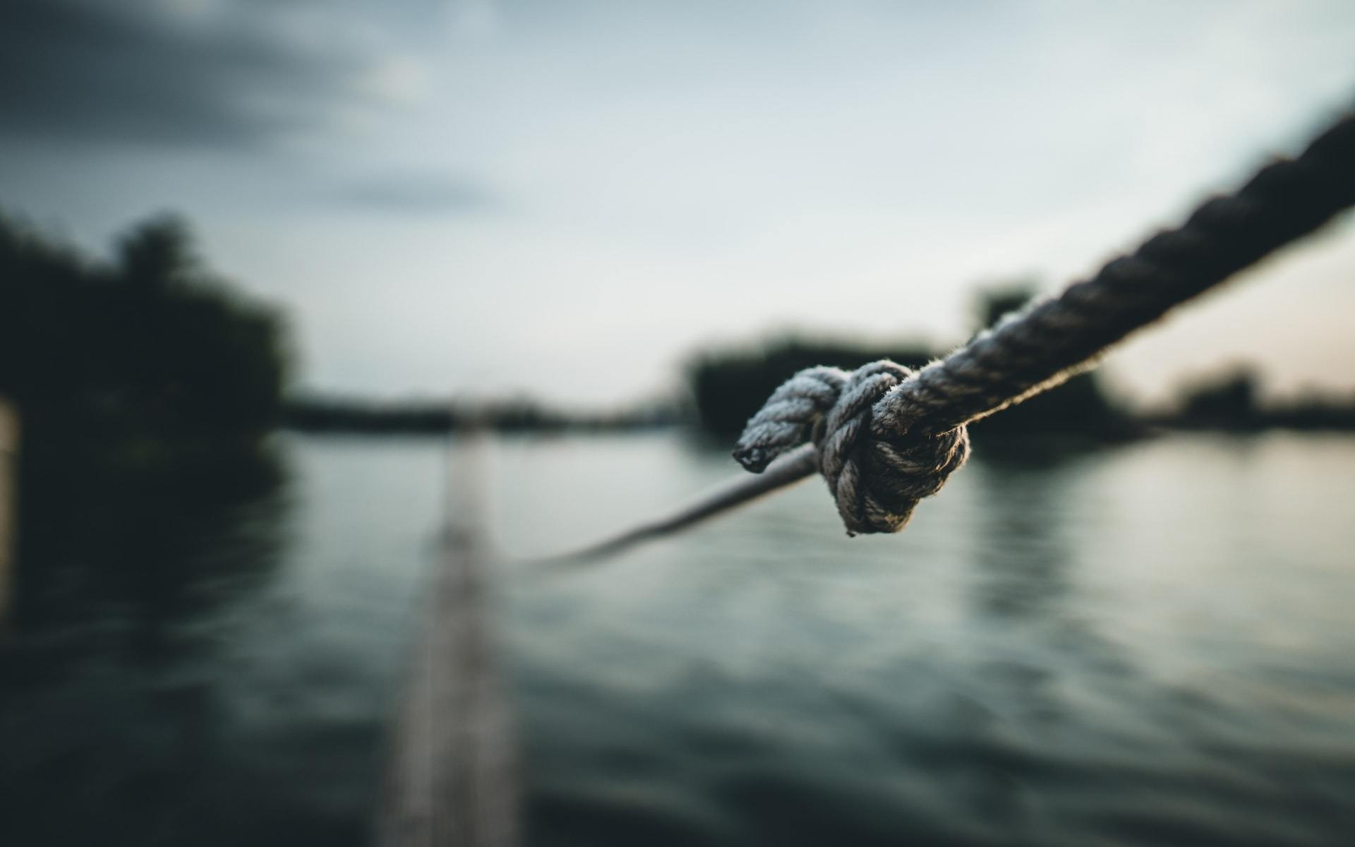 Knot Photo by Max Saeling on Unsplash
