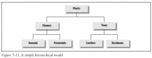 A simple hierarchical model
