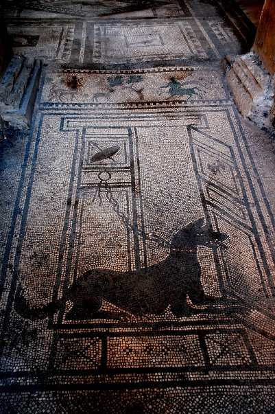 3 days in sorrento naples pompeii mosaic floor taking to the open road peggy tee