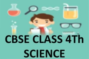 CBSE Class 4th Science