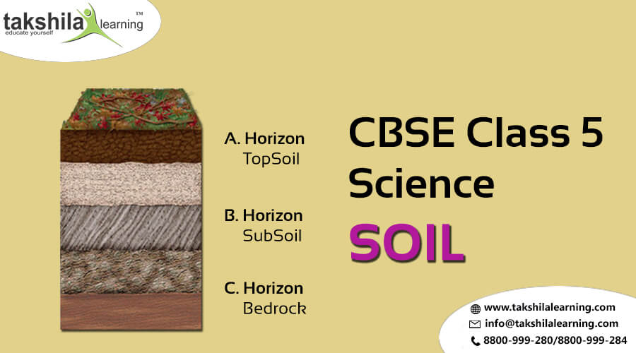 Cbse class 5 science cbse class 5 class 5 evs for What 5 materials make up soil