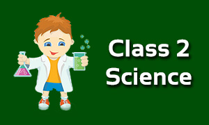CBSE Class 2 Science Classes Online | ICSE | NCERT Solutions