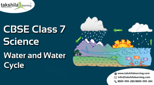 Online NCERT solutions for Class 7 Science - Water and water cycle