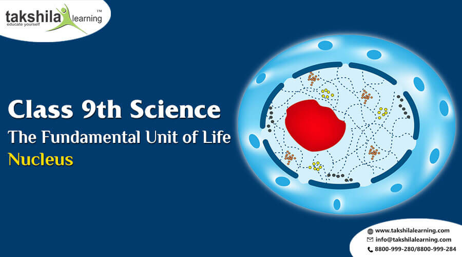 CBSE 9th Class Science The Fundamental Unit of Life - Nucleus