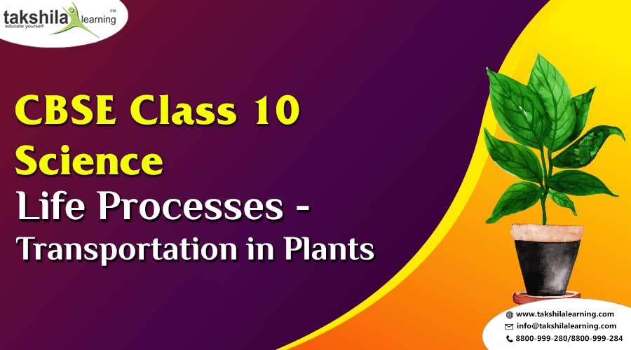 Life processes Chapter 1 – Transportation in plants for Class 10 Science Notes