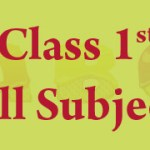 CBSE Class 1 Computer, EVS,GK, Science, Hindi, English, Maths Classes