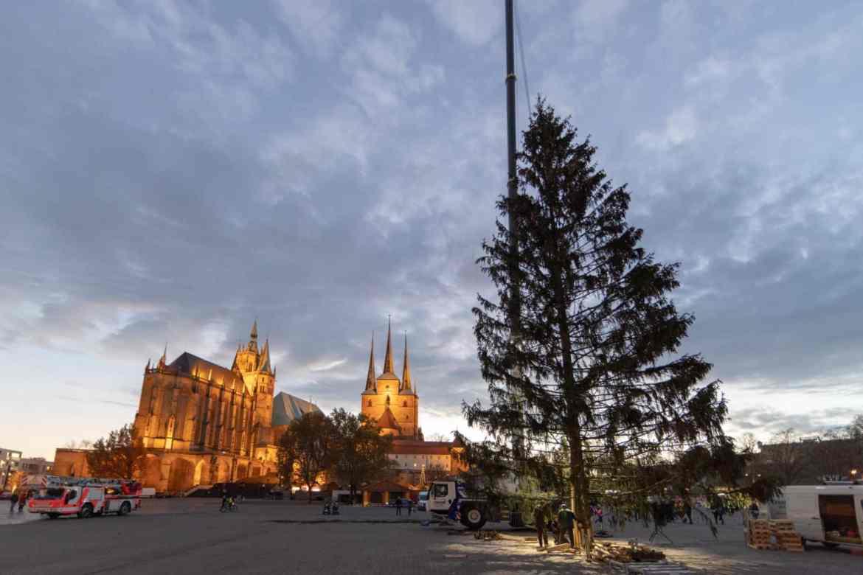 Der Letzte Weihnachtsbaum.Hässlich Deutschland Disst Den Erfurter Weihnachtsbaum T Akt Magazin