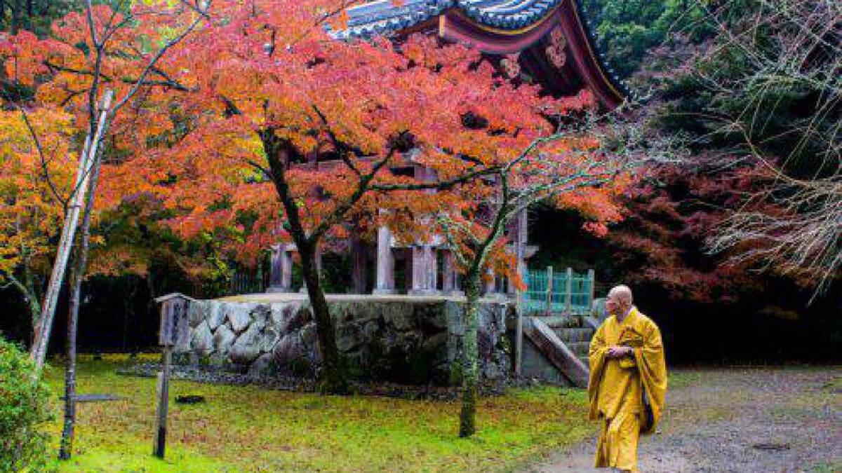 TAKUMI lifestyle | Momijigari 2