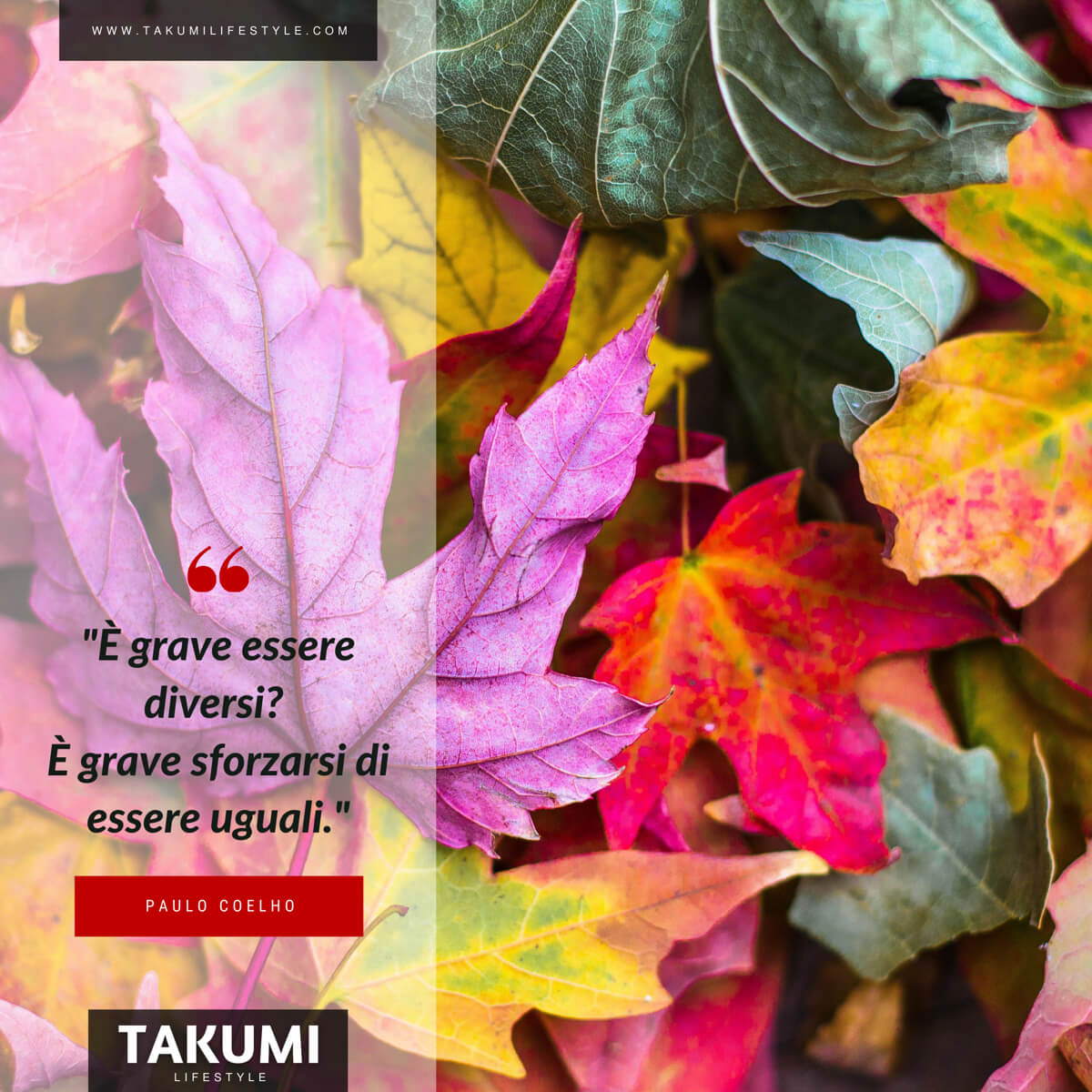 TAKUMI lifestyle | Quote14