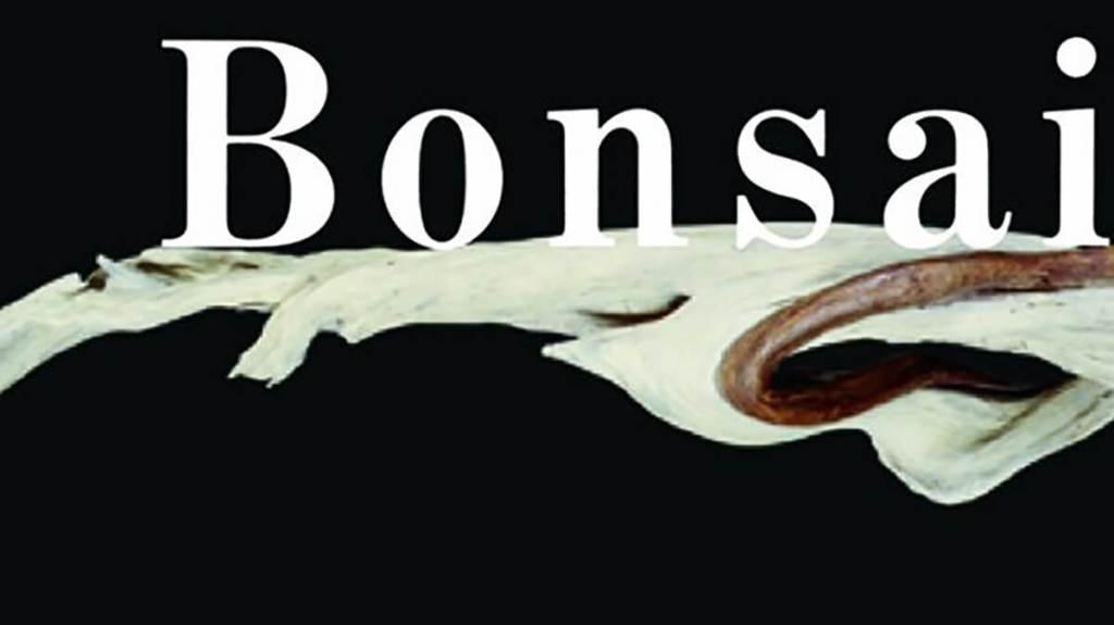 TAKIMI lifestyle - Bonsai - Kunio Kobayashi - cover