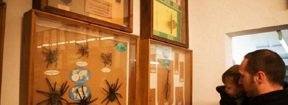 Foto museo Ciencias Naturales Menorca