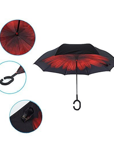The Perfect Umbrella is Here!