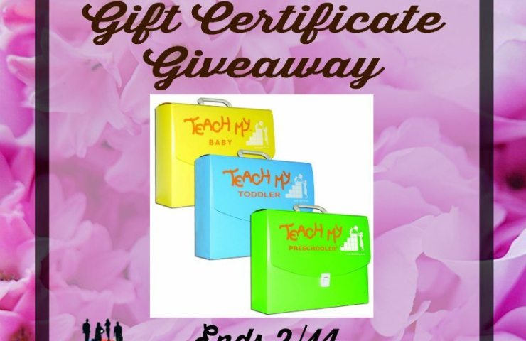 Teach My $50 Gift Certificate Giveaway Ends 2/14
