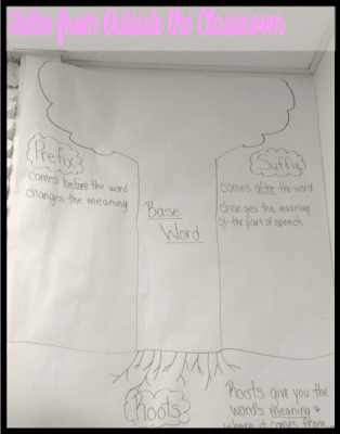 Teach morphology in your classroom with a tree analogy.