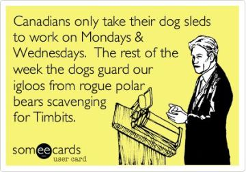 dogs sleds