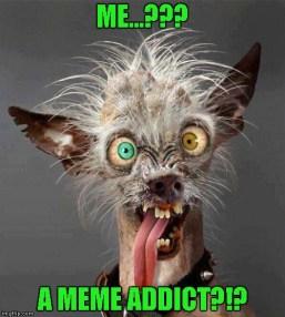 A meme addict