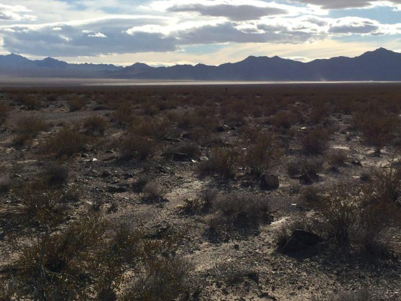 Jean Dry Lake, McCullough Range, Las Vegas, Seven Magic Mountains, Nevada, Desert, Mojave Desert, Roach, Jean
