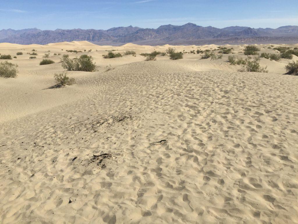 Mesquite Flats, Sand Dunes, Death Valley, California, Mojave Desert, Desert