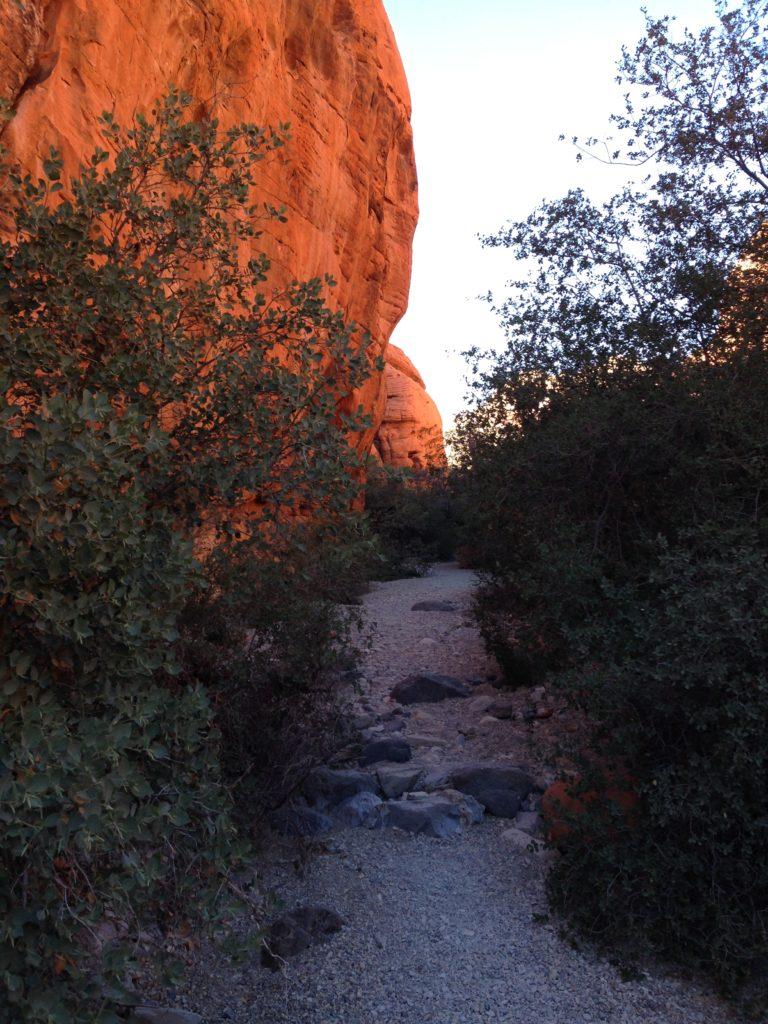 Red Rock National Conservation Area, Las Vegas, Mojave Desert, RRNCA, Nevada, Petroglyphs, Rock Art