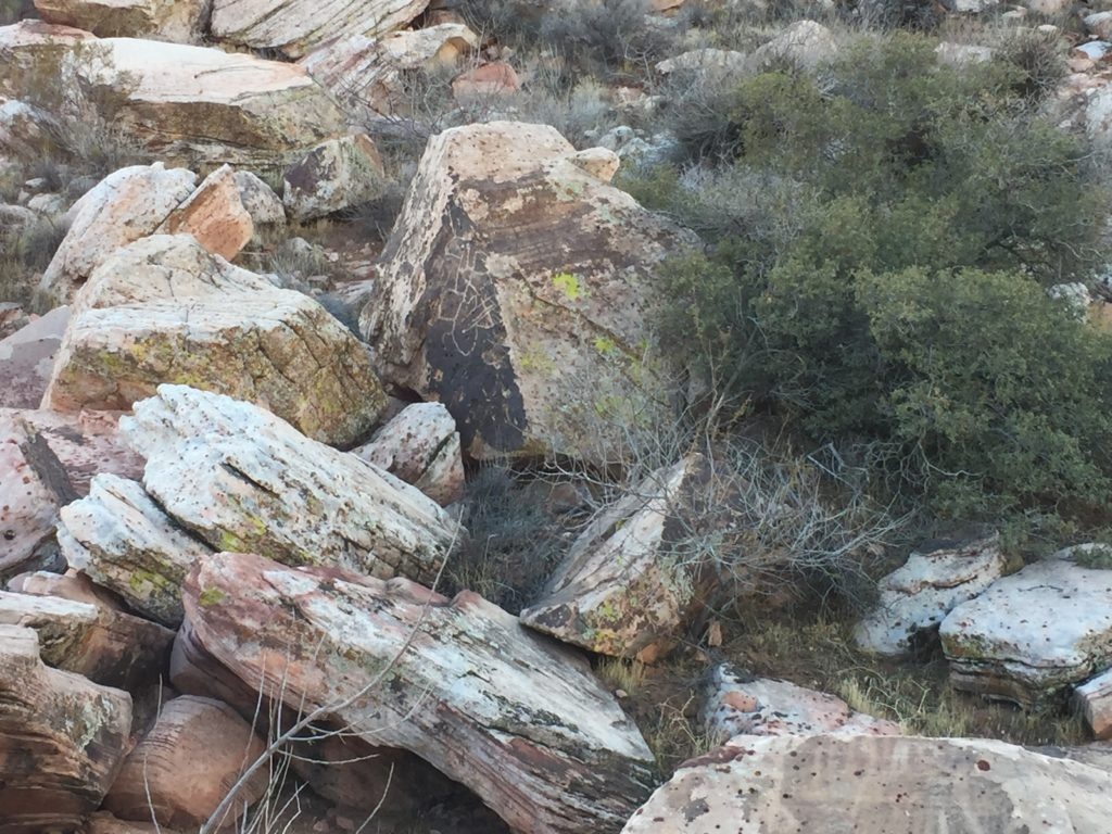 Petroglyphs, Rock Art, RRNCA, La Madre Mountains, Nevada, Red Springs