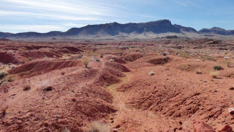 Valley of Fire, Petrified Wood, Moapa Valley, Nevada