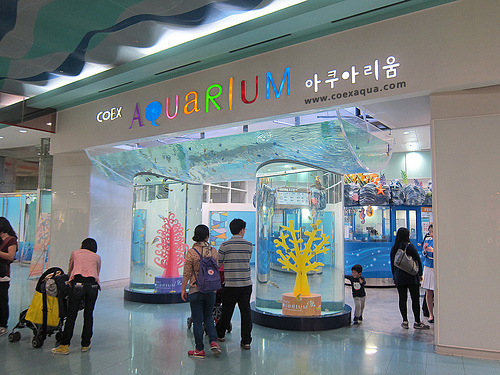 Coex Aquarium in Seoul, Korea