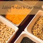 Adding Pulses to Our Meals for Back to School #FamiliesLovePulses