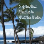 5 of the Best Beaches to Visit this Winter #tt #ttot