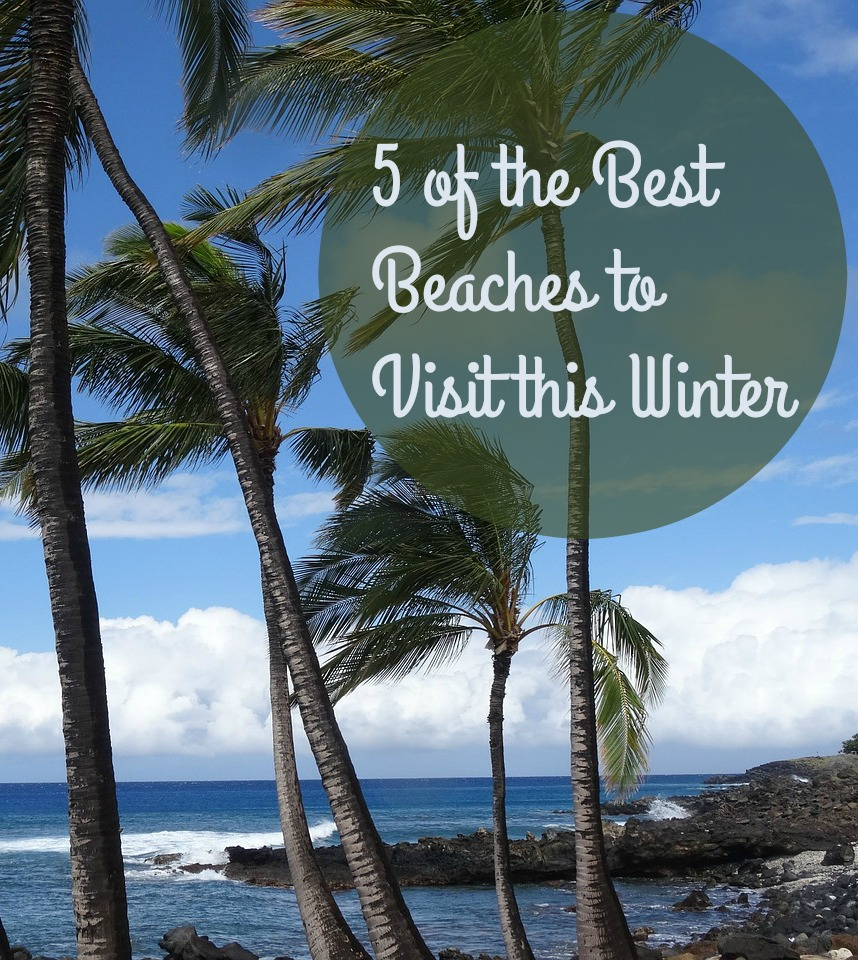 5 of the Best Beaches to Visit this Winter