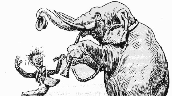 An elephant practising on a fife