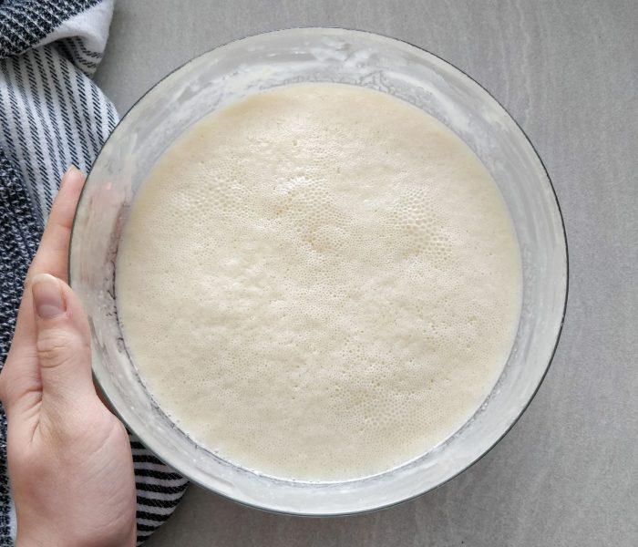 The ultimate Friendship Bread Starter Recipe