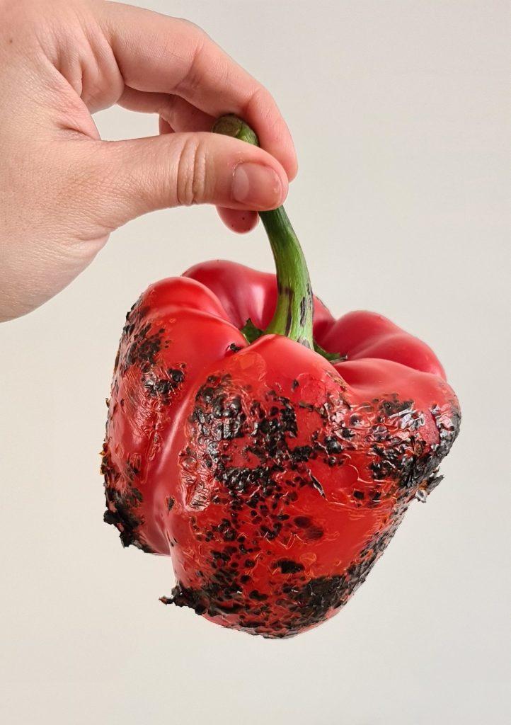 Blackened paprika