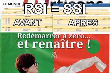 Interview TALESS face au Renard du SSI, la fausse suppression du RSI