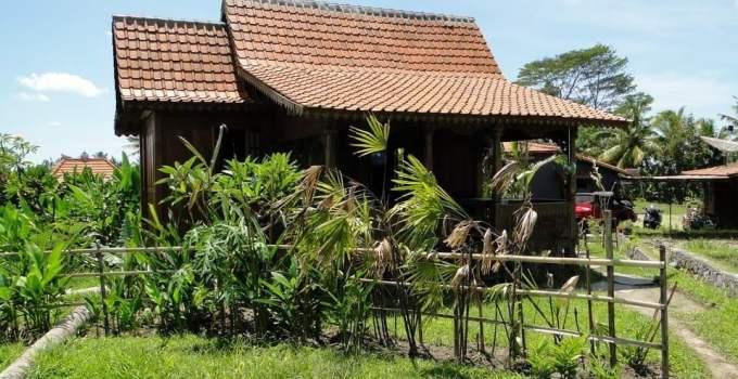 Bali Sawah Indah bungalow