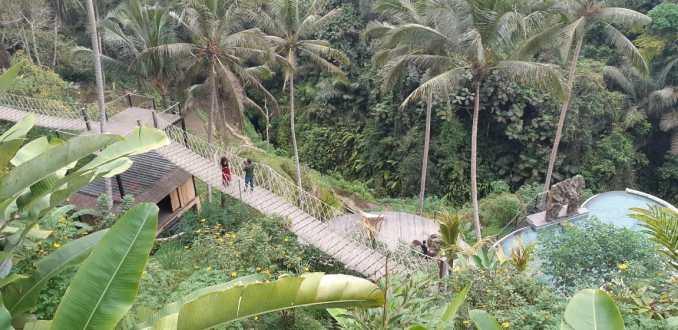 Bali flora and fauna photo op