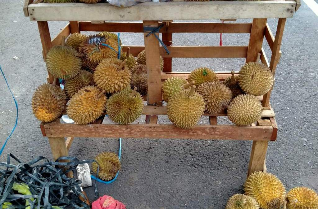 Durian fruit: which should you choose, eat and enjoy. 3 pro-tips