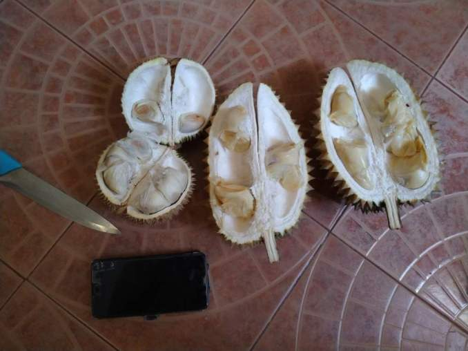 Inside the Durian.
