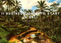 Business ideas companies to start in Bali