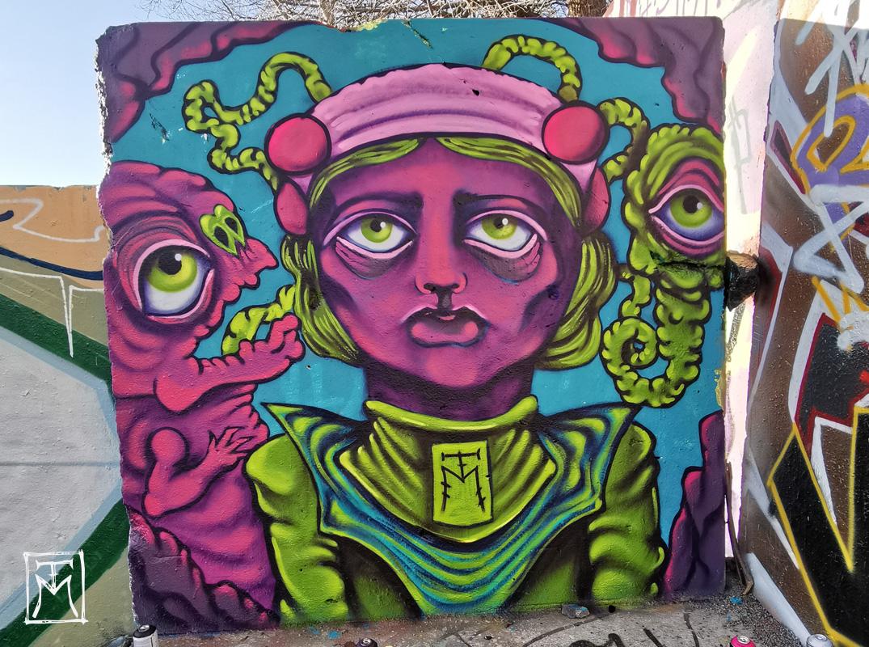Princess Borg -TTM Street Art
